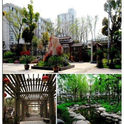浙大风景园林的研究生好考吗 相比于同济大学园林景观设计怎么