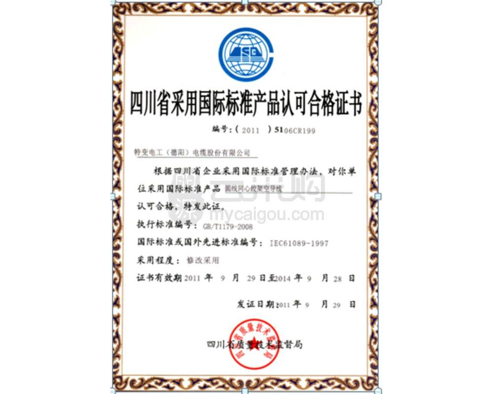 国际标准认证6