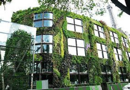 立体绿化十问